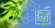 大麻が含む夢の成分「CBD」の効果とは?気になる法制度も解説
