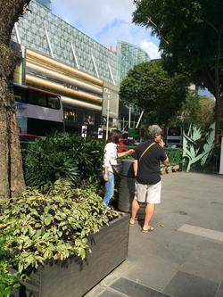 シンガポールの厳しい喫煙ルール