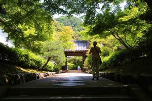 「日本攻略」を競う中国人観光客のすさまじきトラベル情報網