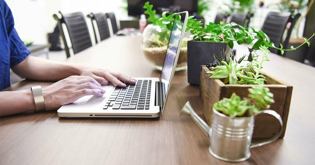 集中の超プロが「今すぐ部屋に観葉植物を置こう」とすすめるワケ