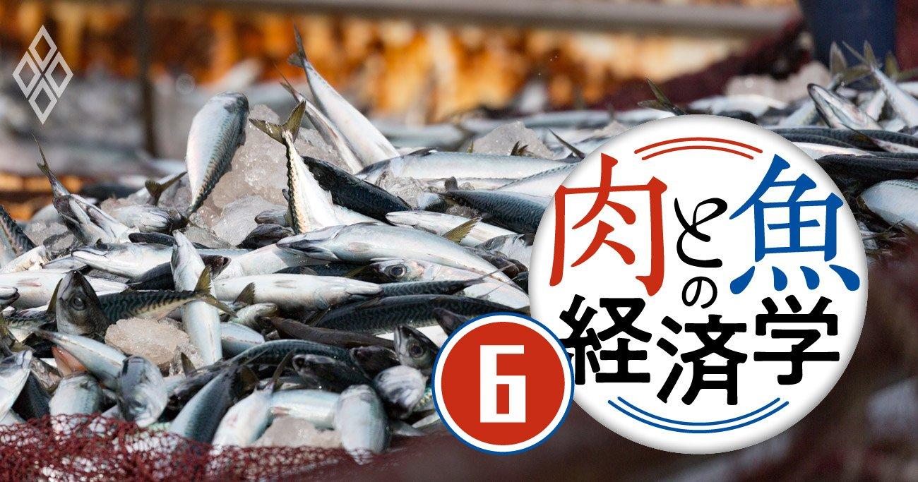 世界の漁獲量が過去最高を記録する一方、日本は20年で4割減の深刻理由