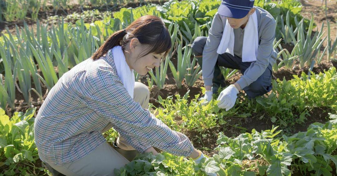 写真:農業をする男女