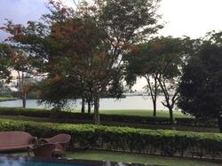 超富裕層の邸宅が多いセントーサコーブの友人宅から眺めた景色。近隣にはゴルフ場やカジノなどがあります。
