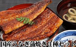 「和歌山県有田市」の「国産うなぎ蒲焼3種セット」