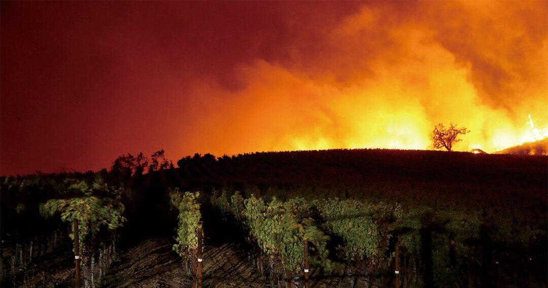 米カリフォルニア州の山火事