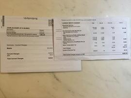 通信費の明細と、「SPS」から届いた明細