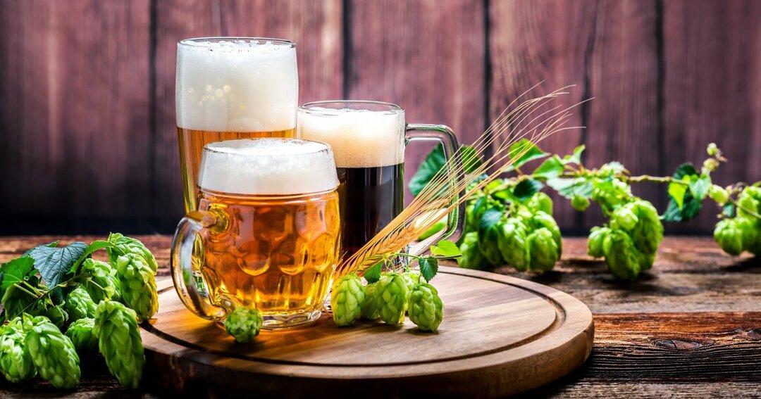 ドイツのビール文化は「地理」から学べ!