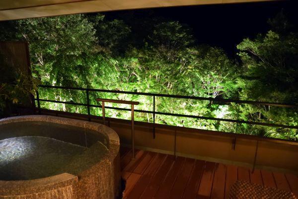 「箱根吟遊」の夜の景色