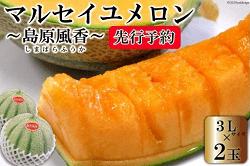 【令和4年度出荷分】マルセイユメロン~島原風香~(3L×2玉)