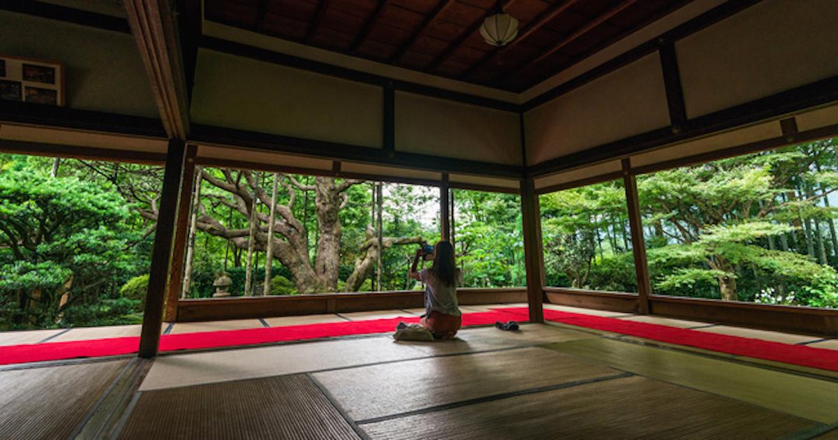 国宝なのにボロボロ、自力で稼げない日本の文化財の危機