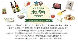 「宮崎県木城町」のふるさと納税サイト