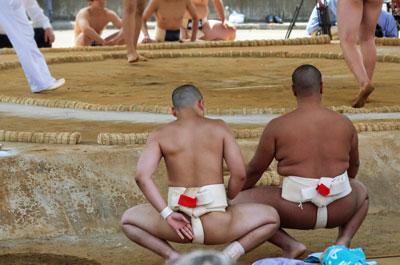 日馬富士騒動で奇しくも注目「高校相撲部」の強豪はどこか