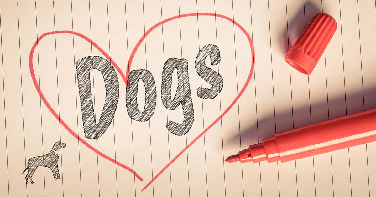 """I like dog.""と言ったら「えっ、犬の肉が好き!?」 ネイティブに通じない、間違いだらけのニッポン英語――『実践 日本人の英語』著者 マーク・ピーターセン氏に聞く"