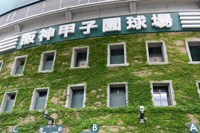 夏の甲子園の裏で、阪神タイガースは毎年「死のロード」を繰り広げているが、近年は様相が変わっている