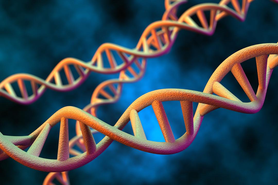 「遺伝子検査」実は占い並み!?過熱ビジネスに注意せよ