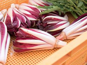 一流シェフが絶賛する日本産のイタリア野菜