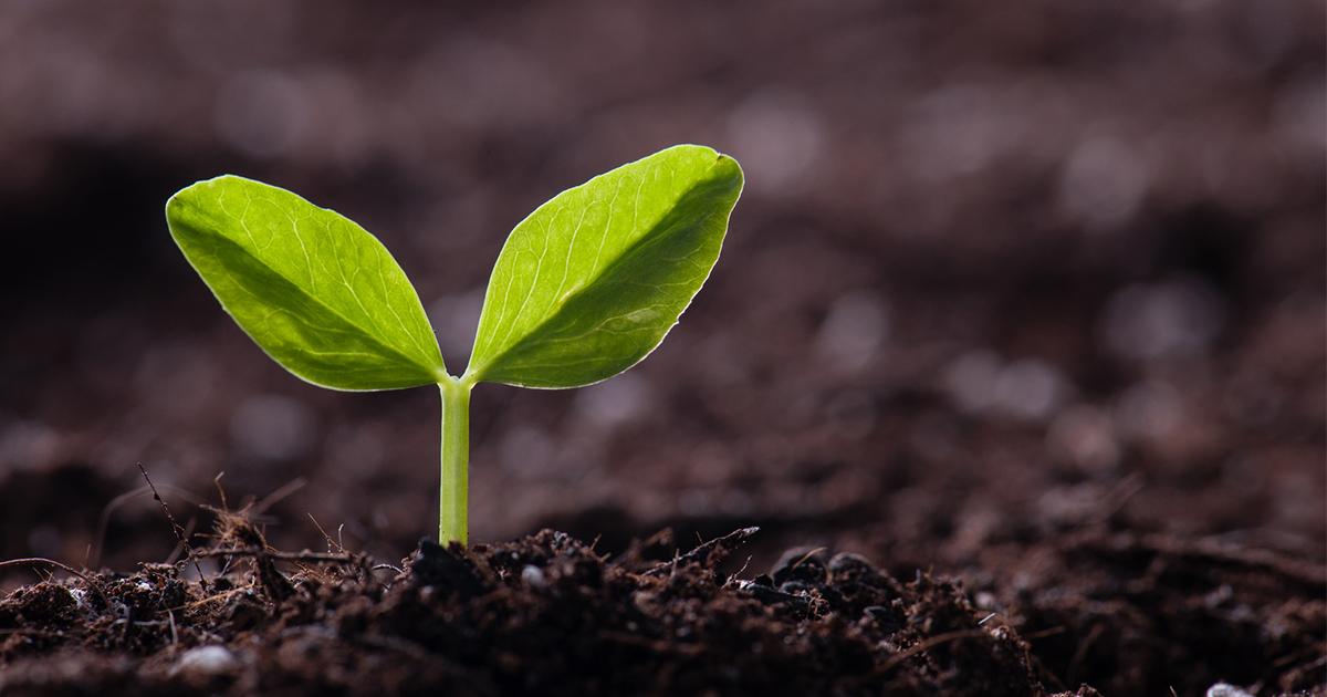 起業には「成功パターン」があった!8つの事業を立ち上げて気づいたこと
