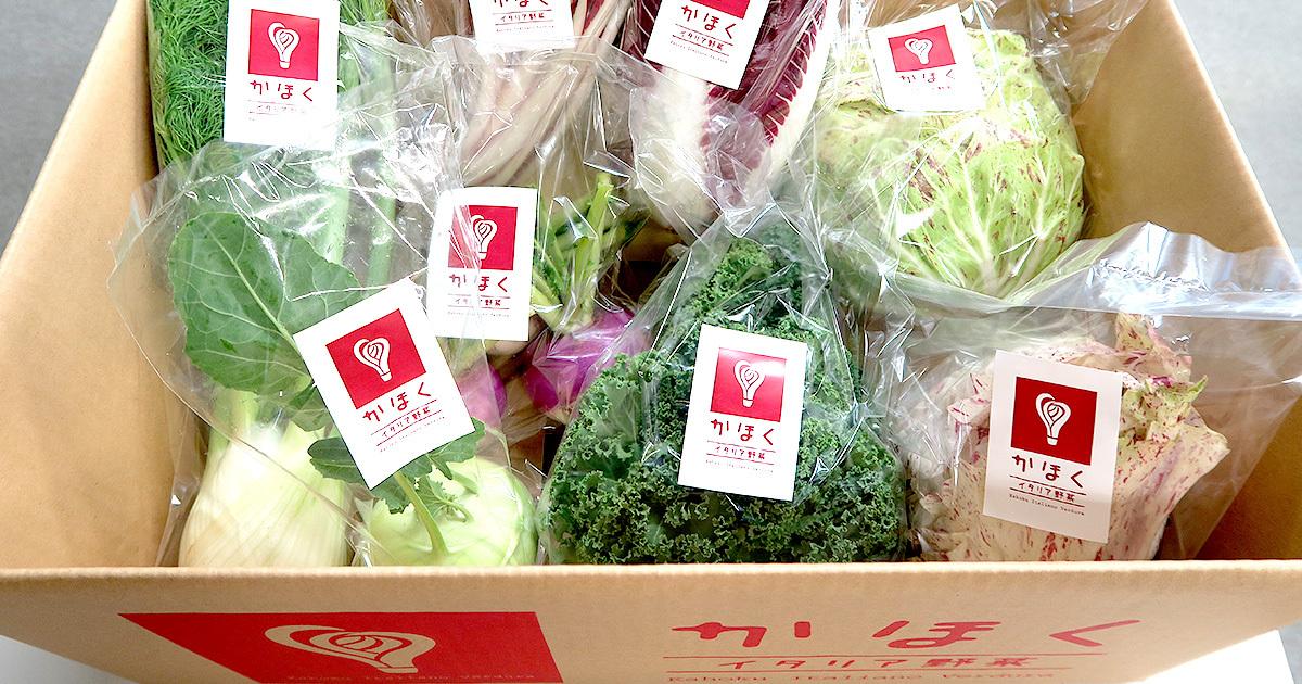 1kg3500円も!イタリア野菜で山形の田舎町が起死回生