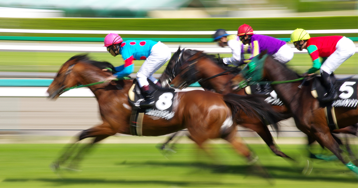 競馬投資 実力と人気のひずみ狙う