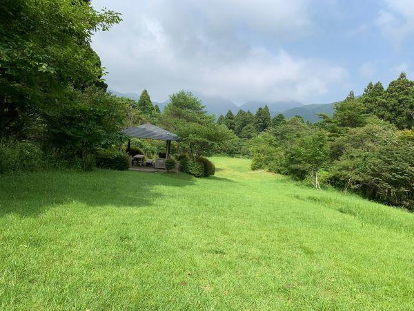 「森のふれあい館」の芝生