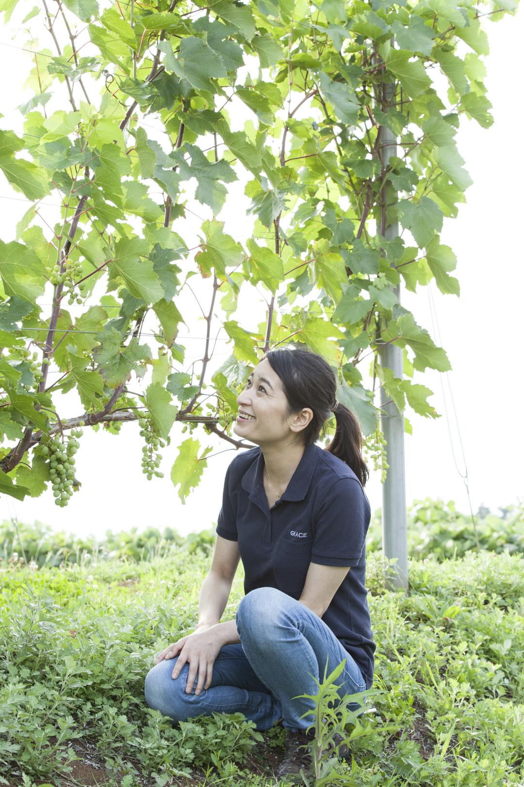 「スモール・イズ・ビューティフル」を胸に、世界に認められるワインを造り続ける! グレイスワインの三澤彩奈さん