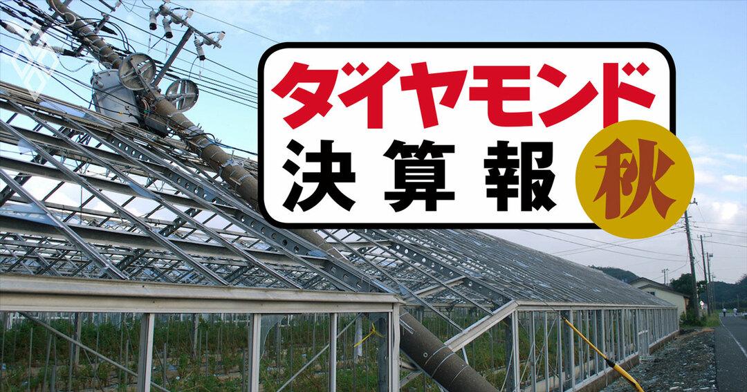 東京電力HDが過去最大の「台風」特損118億円、泣きっ面に蜂【決算報19秋】