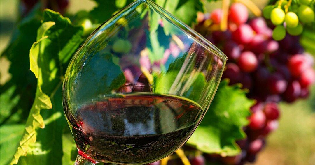 「赤ワインが健康に良い」という不可思議なブームが終わった理由