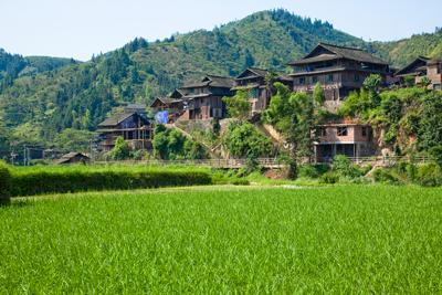 中国の若き農業者たちが日本視察で見せた熱意