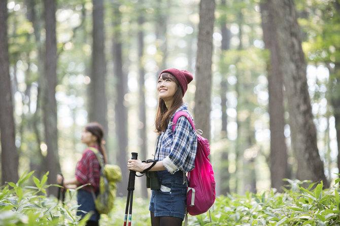 山行の前に、地形・土壌・植生なども調べておくと、山の楽しさは2倍にも3倍にも増すでしょう。