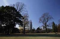 広大な緑地公園が静寂を守る街「代々木4・5丁目」