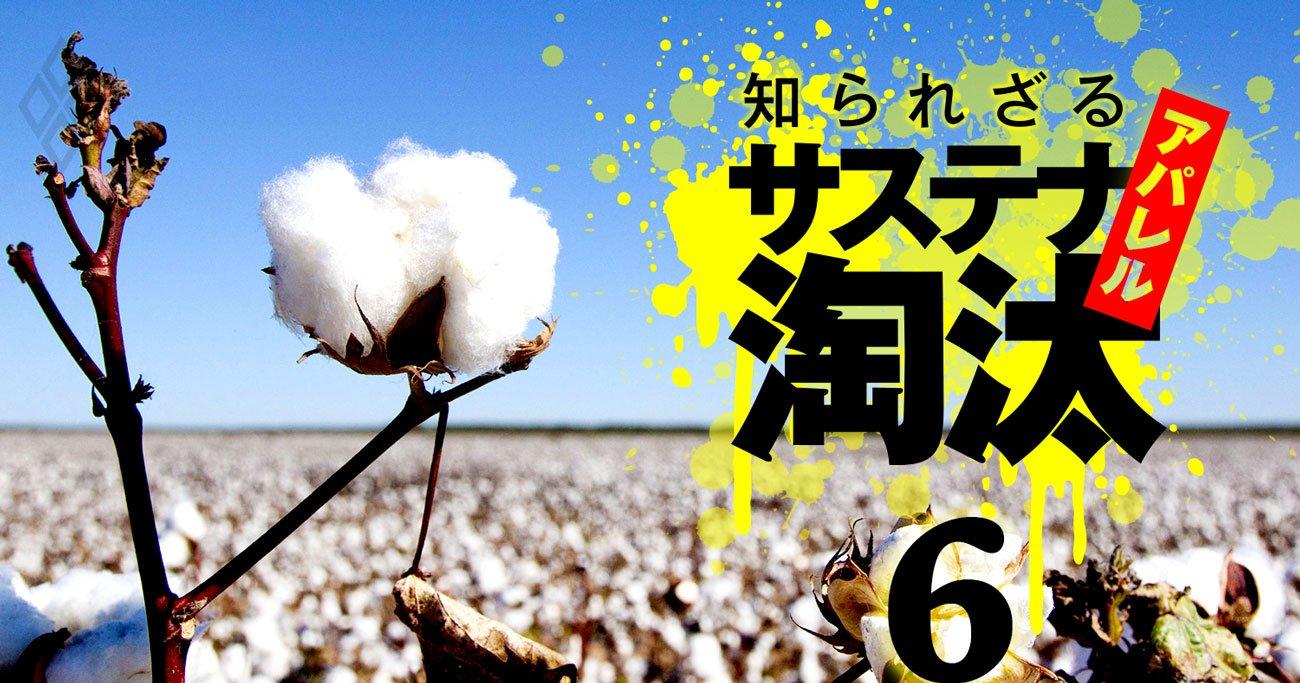 ユニクロでも世界標準の「平均点」、環境問題対応が迫る日本アパレルの淘汰リスク