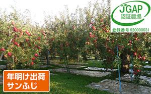 「サンふじ」がもらえる「青森県鶴田町」