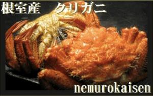 「根室市」に1万円の寄付をするともらえる「【北海道根室産】クリガニ12~18尾(合計2.4kg)」