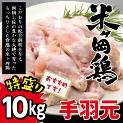 「米ヶ岡鶏手羽元」がもらえる「高知県奈半利町」