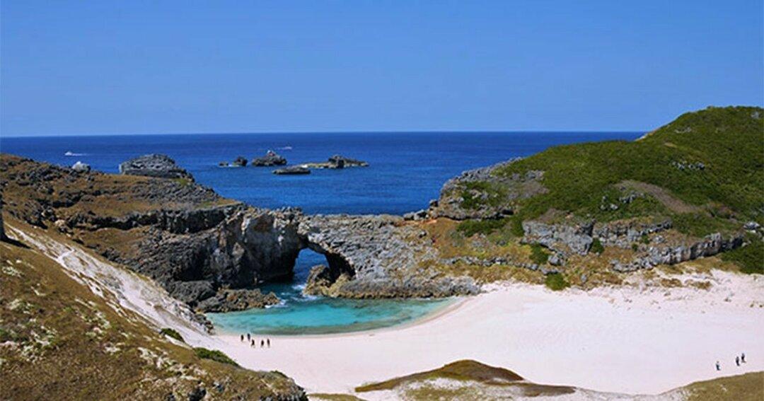 環境保護のため1日に100人までしか上陸できない小笠原諸島の南島