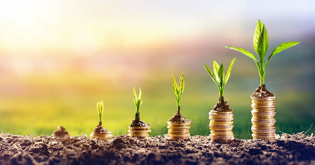 【FIREするなら小型株集中投資が最短コース】<br />あなたが投資で勝てないのは<br />有名企業に投資しているから