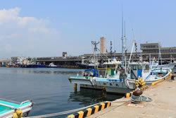 福島・小名浜港に水揚げされた初ガツオ<br />築地市場で値段がつかない風評被害の深刻