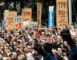 TPPは危機ではなく好機<br />農協の逆襲にすくむ菅政権