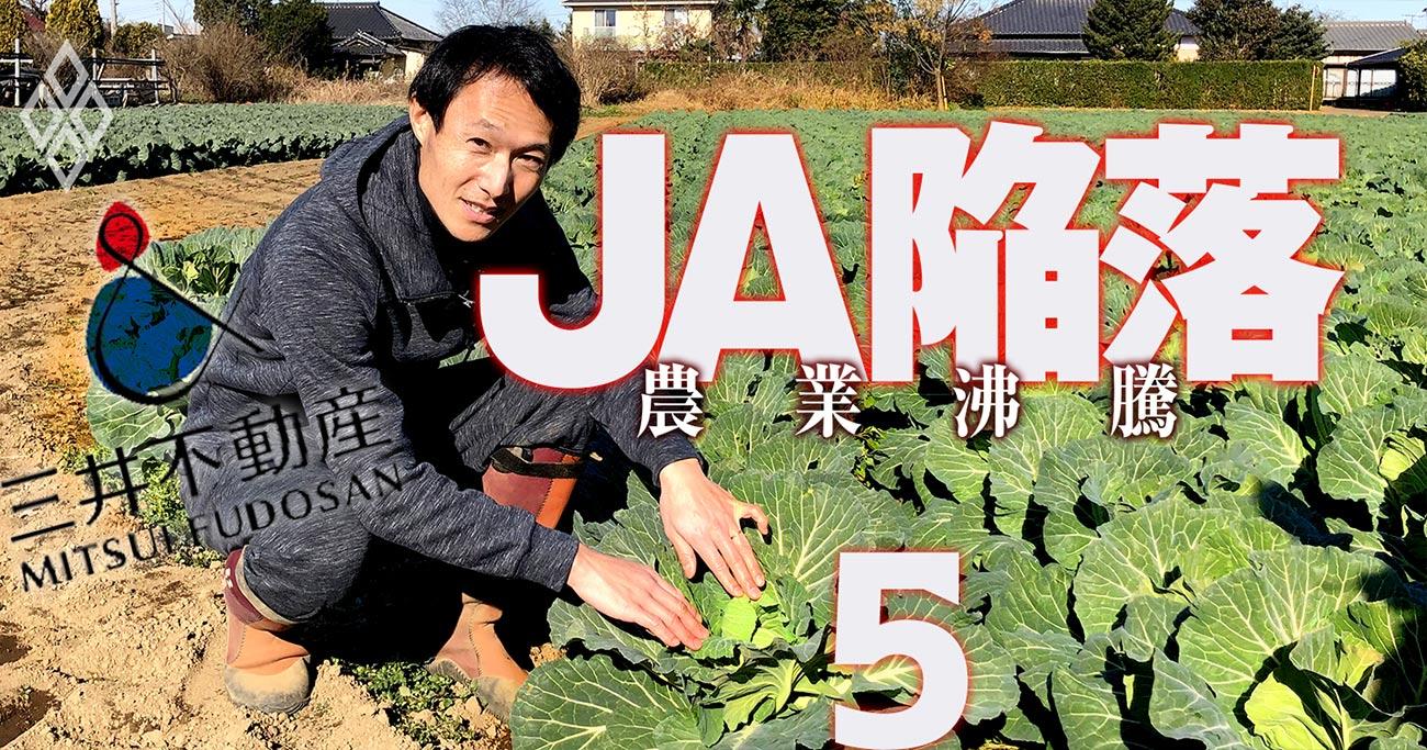 三井不動産が日本最大「3000ha農場」計画、エリート社員が有力農家に丁稚奉公