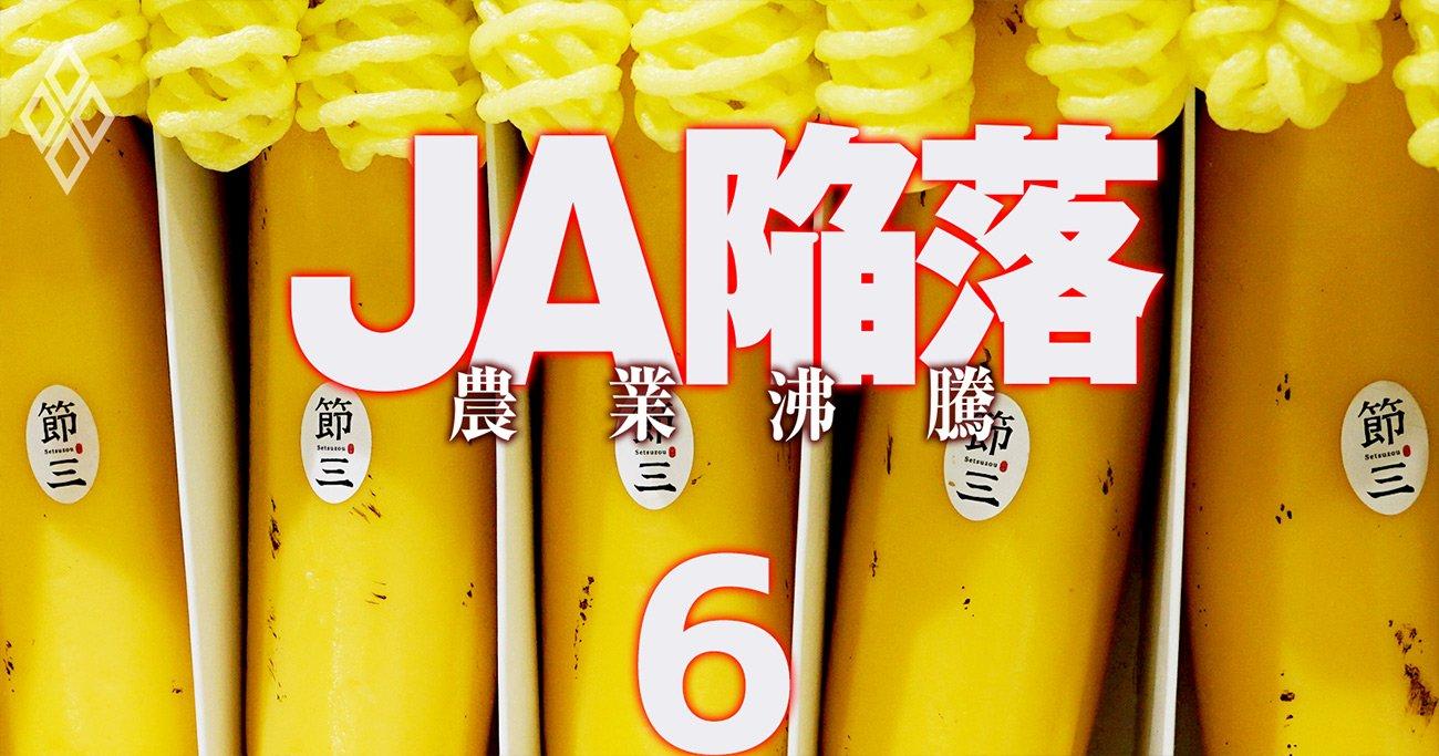 すごい中小農家ランキング!首位は国産バナナ「1本1000円」を布教する規格外研究者