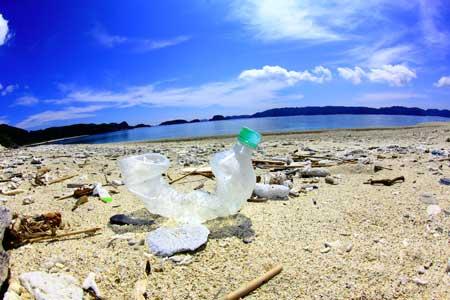 海辺でペットボトルを捨てるなど、日本人観光客のマナーの悪さも昔から問題になっています