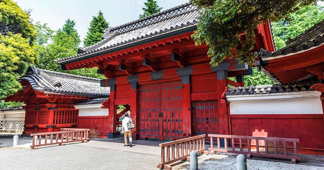 日本の大学は「安くてお得」、コロナ後に中国人留学生が爆増しそうな理由