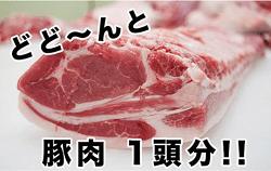 東松島産 豚肉1頭分オーダーカット!!(なんと50kg)