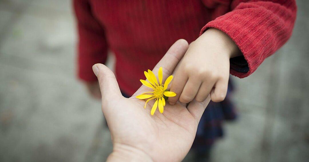 生きがいと本当の幸せが見つかる<br />「親切リフレクション」とは?
