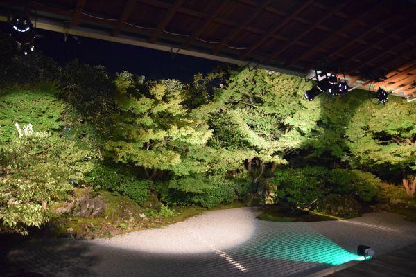 圓徳院の石庭