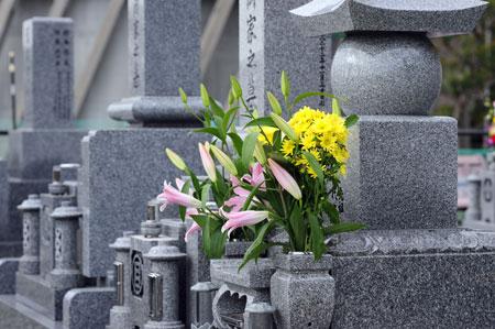 ニーズの変化により、現代のお墓事情は大きく変わってきています。
