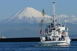 「焼津市」から見える富士山