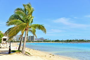 罰金や逮捕も!?年末年始、ハワイに行く人は要注意 NG行動8連発