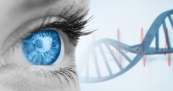 「顔」で難病を見抜く!? 「遺伝学者×医師」のちょっと変わった仕事の流儀