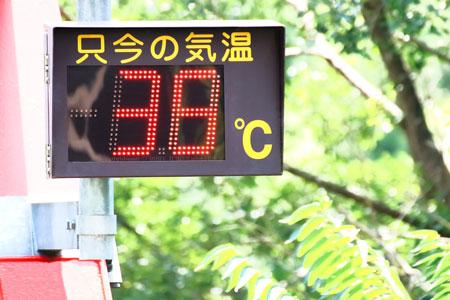 異常な暑さが続いています